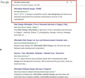 SEO results for local website