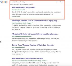 SEO results for website ranking